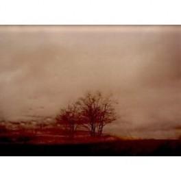 Todd Hido, Roaming Landscape